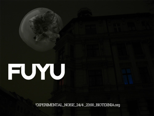 FUYU BAND - Experimental Noise Poster